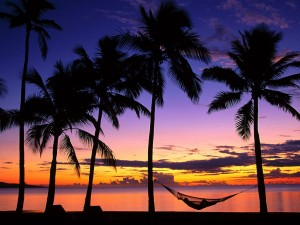 Sunset-wallpapers-desktop-palms