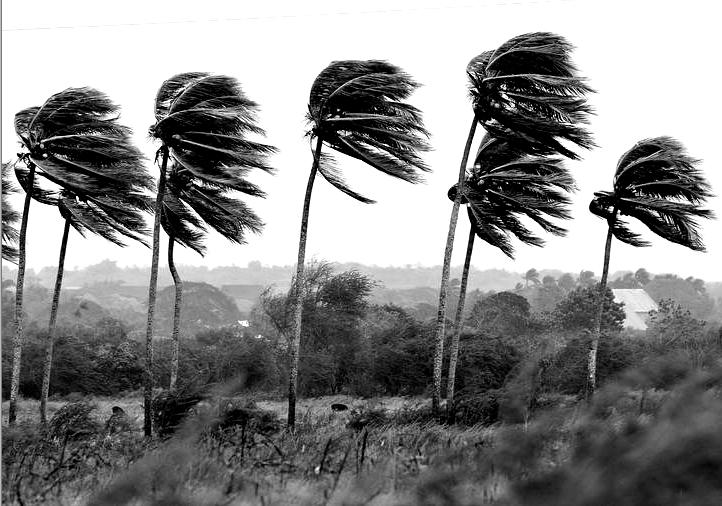 Medidas de precaución – Ciclón Debbie